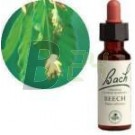 Bach virágeszencia bükkfa (10 ml) ML058836-110-1