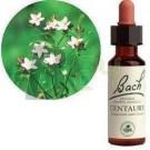 Bach virágeszencia kisezerjófű (10 ml) ML058843-110-1