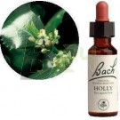 Bach virágeszencia magyal (10 ml) ML058868-110-1