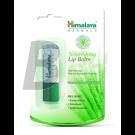 Himalaya ajakápoló tápláló /2020b/ (1 db) ML072091-21-6